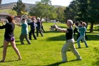 Wushu Taichi Center - Liu Yu presents:Saturday in Meadow Park