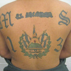 703px-MS-13_tattoo_2