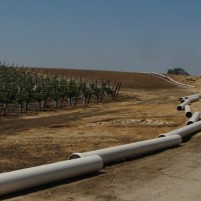 Water pipes laid out at a Justin Vineyard and Winery property