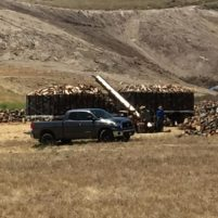 Truckloads of lumber being removed