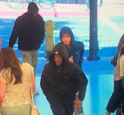 Seventeen arrested after Apple store robberies